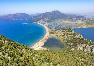 dalyan-kaunos-turtle-beach
