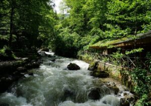 trabzon-altindere-national-park